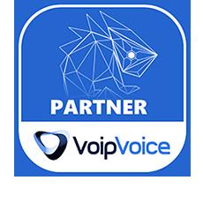 Da oggi siamo partner VoipVoice
